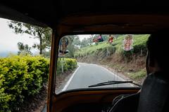 Munnar (Patrick Neiens) Tags: kannandevanhills kerala indien in