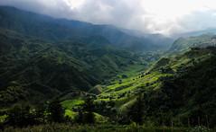 Sapa Valley (SuperG82) Tags: vietnam valley landscape sapa hmong riceterraces scenery
