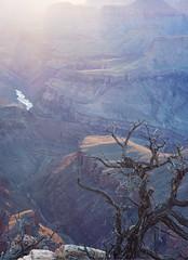 Grand Canyon Sunset (owencherry) Tags: sunset arizona grand canyon d700