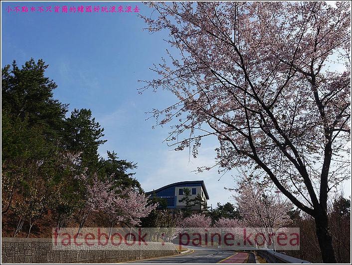 麗水海上纜車與紫山公園 (5).JPG
