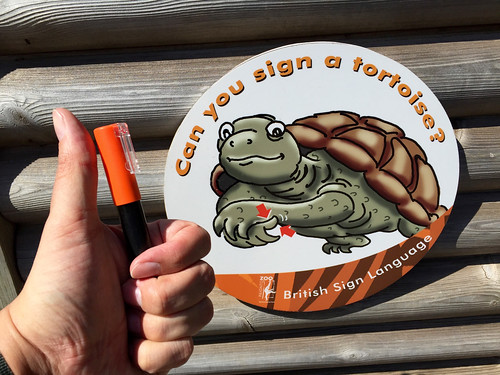Sign a Tortoise