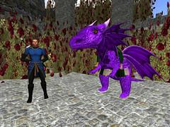 Reluctant Dragon - Seanchai InWorldz