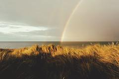 (jonathon lynam) Tags: rainbow colour yellow violet green blue red sky ammophila marramgrass wexford ireland sea shadow evening nikond40 nikon nikonphotography nature light summer sun nikkor flickr