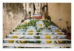 Escalier fleuri (Rmi Marchand) Tags: escalier noto sicile sicilia italia italie italy sicily stairs