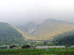 Xiaoyoukeng (sal.c) Tags: mountain nikon taiwan april taipei   callalily   yangmingshan  xiaoyoukeng p7800