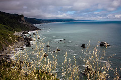 Pacific Coast (San Francisco Gal) Tags: lostcoast pacific ocean sea water rock grass mountain sky cliff cloud