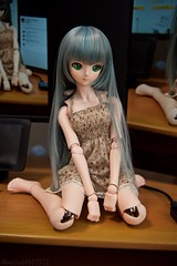 (mauserM712) Tags:     hatsunemiku dollfiedream dds doll d810 2470mm nikon nikkor f28 vrii volks