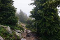 IMG_4144.jpg (Backpacking With Bacon) Tags: washington northerncascades hiking mtpilchuck granitefalls unitedstates us