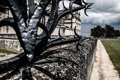 Epines Royales - Royal Spines (Le Vrai Erw@n) Tags: demeure royal royale chateau castle piquant spine pine epine epines spines france architecture architect