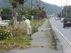 Tidying up the overgrowth is a major source of employment in summer (Stop carbon pollution) Tags: flickr japan 日本 honshuu 本州 kantou 関東 saitamaken 埼玉県