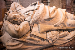 20160629-IMG_4779 Dr John Rae Artic Explorer St Magnus Catherdral Kirkwall Orkney Scotland.jpg (rodtuk) Tags: 70d roderickt scotland statue misc military b24 places uk phototypes orkney historic