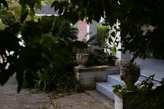 Stoop (seandoglin) Tags: stoop downtown shadow tree porch