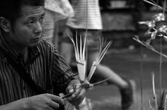Origami di bamb (Gaia83) Tags: veterinarifotografi fieredisangiuliano macerata street