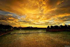 2016/08/10 Scenery in the countryside @ (monbydick) Tags: cloud exposure monbydick nikon scenery sky sunset taiwan         landscape    d600         explore a012 tamron