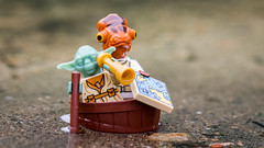 The Navigators (Reiterlied) Tags: 105mm ackbar admiral bergen boat d5200 dslr lego legography lens macro map minifig minifigure nikon norway photography prime reiterlied sigma starwars stuckinplastic toy yoda