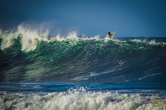 750_1088_low res.jpg (Cath Thuaux) Tags: beach surf australia surfing surfboard swell avocabeach 2015 may2015 surfsurfingavoca beachswellmay