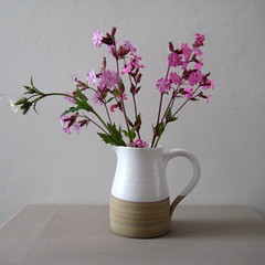 White Jug (Jude Allman) Tags: white ceramic ceramics handmade crafts craft pot pots jude clay jug pottery jugs pitcher pitchers stoneware folksy