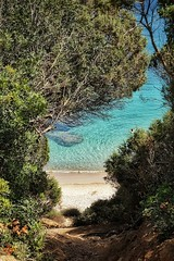 Glimpse of goodness... (aistora) Tags: sea beach nature water sand sun sunny sunshine mediterranean med summer vacation holidays swim green trees bushes plants grove woods forest blue aqua teal emerald transparent clear crystal ripples calm quiet paradise wow