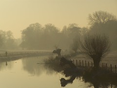 Kromme Rijn (Skylark92) Tags: winter river netherlands holland utrecht rhijnauwen rijn rivier nederland kromme