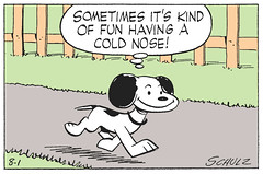 Sometimes it's kind of fun having a cold nose! (Tom Simpson) Tags: peanuts charliebrown comics snoopy dog charlesschulz charlesmschulz comicstrip newspapercomics 1954 1950s illustration vintage funny coldnose