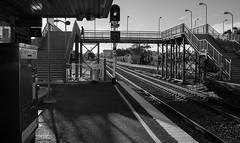 Amber (OzzRod) Tags: blackandwhite monochrome station pentax footbridge platform railway transportation rails waratah signal k3 pentaxsingleinjuly2016 hdpentaxdfa2470mmf28