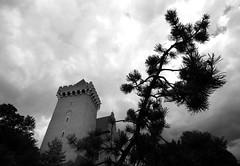 Poznan Castle (roomman) Tags: 2016 poznan poland polska wielkopolska wielko town city bw blackandwhite black white bandw style design grey monochrome castle tree contrast tower