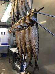 #fisk (Sakena) Tags: fisk