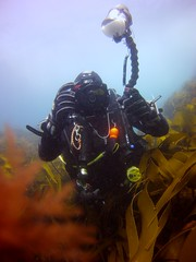 18 July 2016 - Scillies Trip PICT0214 (severnsidesubaqua) Tags: scillies scilly scuba diving