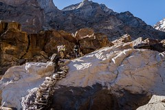 L'escalier prilleux... (Dolkar-photographe...) Tags: portage upstairs porteurs happy escaliersnaturels montagne umasilatrek sentier inde bouddhisme karsha paldar paysage trek zanskar t2016