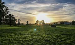 Carmarthen Sunset (Andy.Gocher) Tags: andygocher canon100d sigma18250 europe uk wales camarthen crugybar sunset field trees sun lens flare green sky clouds