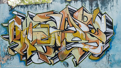 _DSC5967 (Mario C Bucci) Tags: saida fotografia pacheco paulo tellis mario bucci hugo shiraga fabio sideny roland grafites volu ii