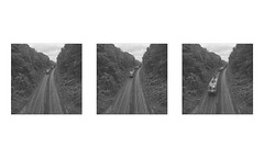 (Gabriel Aljundi) Tags: iphone se minimal nature natural north indie forest bosque germany alemania german alemn lightroom vsco aire libre bn black white blanco y negro trptico triptych train movement velocidad rail movimiento speed daylight light luz sky foto summer verano color day digital exposure beautiful belle love cool lovely good