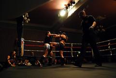 cross4 (knicknac) Tags: girls fight kick ring thai winner punch dojo boxing total muaythai rampage hernebay k1 ringmasters totaldojo girlfighters