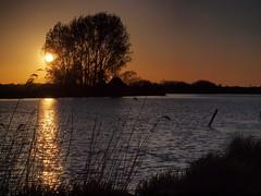 Broads Sunset (tony marfell) Tags: sunset river yare buckenham