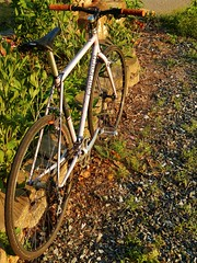 Lilac Eprouvé at Sunset (guidedbybicycle) Tags: paul handmade steel parts retro brakes custom 90s saddle cyclocross components seatpost flite