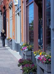 100_1404 (~nevikk~) Tags: flowers brick person sidewalk storefronts urbansetting kevinkelly plateglass tightlycropped personwalking