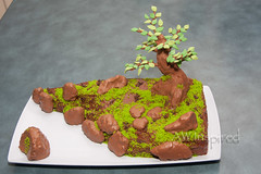 Penjing Cake (AW Inspired Cakes) Tags: brown tree green cake rock stone leaf moss chocolate scene bonsai trunk edible penjing