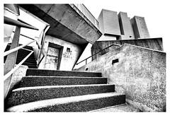 Freedom (leo.roos) Tags: derotterdamaverticalcity verticalestad remkoolhaas oma stairs staircase trap erasmusbrug a7s sonye1628 modifiedforff rotterdam dyxummeet paul paulemans snegren darosa leoroos graffiti grafitti wallart streetart graphiti graphitti noiretblanc july2016