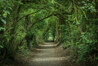 Enchanted way, Havant