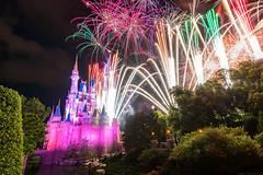 Fireworks Friday - Castle Wishes (MattStemerman) Tags: wishes d750 disneyworld waltdisneyworld disney magickingdom fireworks wdw cinderellacastle nikon