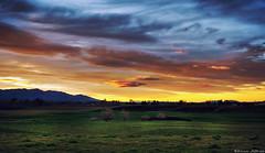 Sunset - Casting shadows (Kevin_Jeffries) Tags: lighting light tree nature nikon shadows dusk kevinjeffries