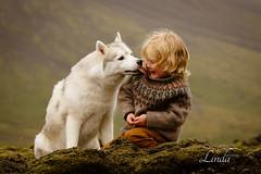 Photography workshop with ... (FotoLind) Tags: elena shumilova workshop iceland dog husky benjamin