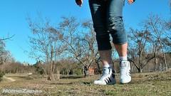 Adidas Top Ten Hi [2010] (foto 38) (HomoZapas) Tags: homozapas zapatillas sneakers baskets adidas deportivas zapas topten toptenhi tenis zapatillasdeportivas shoes turnschuhe scarpe chaussures кроссовки espadrilles calcetines socks chaussettes socken