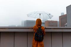 () Tags: tokyo japan nippon tsukiji fish market city rain neo red umbrella chuo