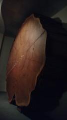 IMG_20160724_153815504 (NR Intercmbio) Tags: ny 20160724 cinema bubba gump camaro shrimp museu animais liga justia historia nrintercambio american