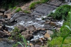 DSC_4109 (CharithMania) Tags: kadiyanlenawaterfall nawalapitiya charithmania kadiyanlena kataboola kataboolawaterfall kandy centralprovince archbridge bridge greenbridge archbridgesrilanka nikond90
