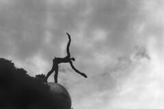 PARCELLE 16-021_06 (gyjishukke) Tags: analog argentique 400tx trix 800iso hc110 dilb 830 minolta x700 oiseau sculpture envol believeinfilm 32 scan lowdef