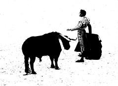 Sbastien Castella (aficion2012) Tags: arles garcigrande toros bull fight paques corrida francia france sebastien castella bw monochrome duotone torero matador toreador 2016