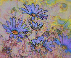 IMG_0860 Violet beauties (Rodolfo Frino) Tags: flower art artistic color colour colourful colorful violet yellow orange processed image processing imageprocessing figurative figurativeart