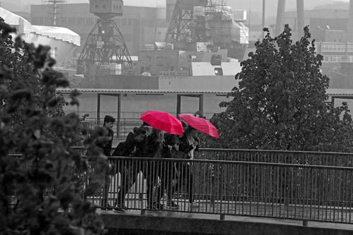 "Regen Regen 1 • <a style=""font-size:0.8em;"" href=""http://www.flickr.com/photos/69570948@N04/17316351074/"" target=""_blank"">Auf Flickr ansehen</a>"